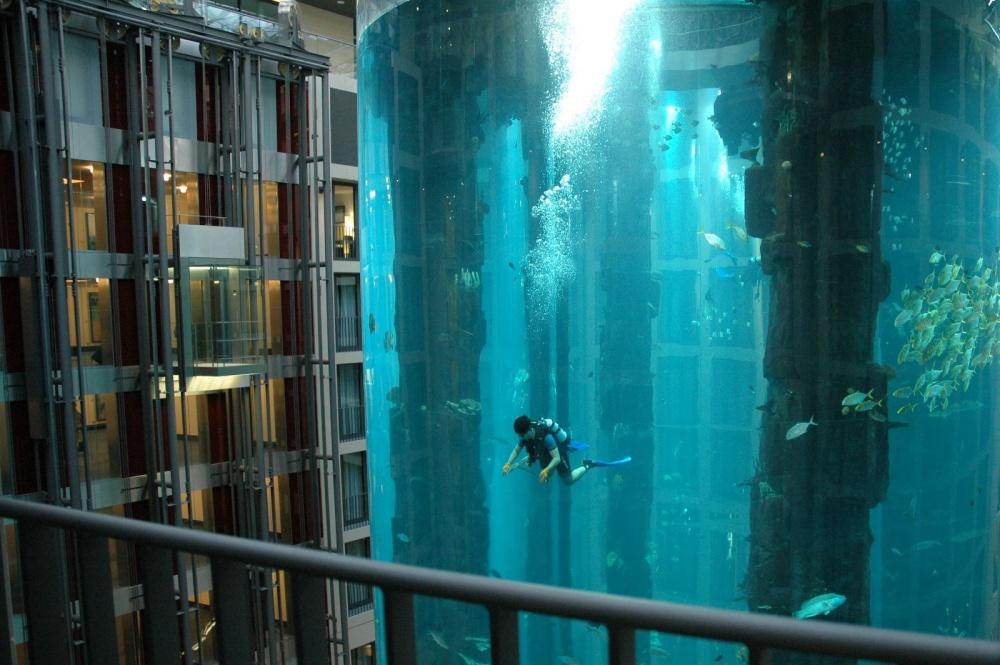 1500 balığın bulunduğu bu akvaryum, aslında bir asansörün  içi.