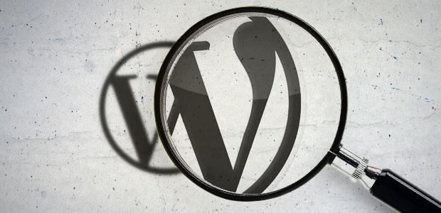 Wordpress'te Yazıdaki Yazar Kutusunda Yazarları Sınırlamak