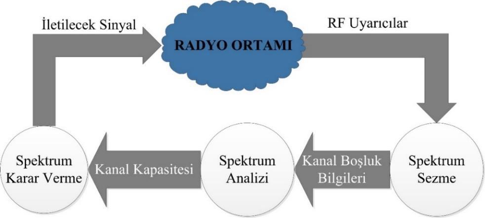 Bilişsel Radyo Ağları (Cognitive Radio Networks - CRN)